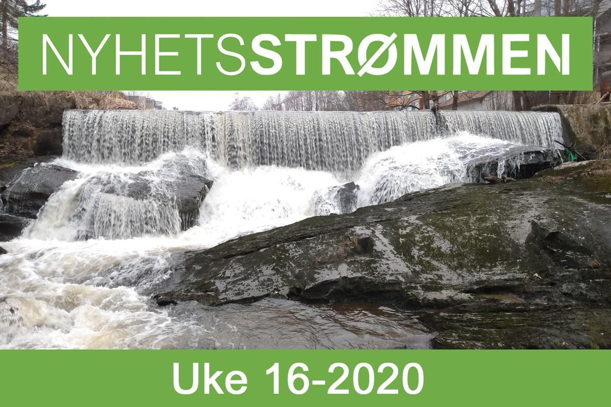 You are currently viewing NyhetsStrømmen: Nyheter om Strømmen i uke 16-2020 (13.-19. april)
