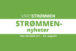 Read more about the article Strømmen nyheter uke 34-2020 (17. – 23. august)