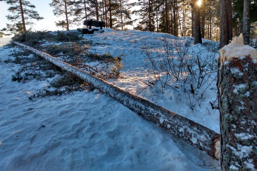 St.Hansfjellet, Strømmen. Tre utsatt for hærverk, 16. januar 2021. Foto: Vårt Strømmen, vartstrommen.no.