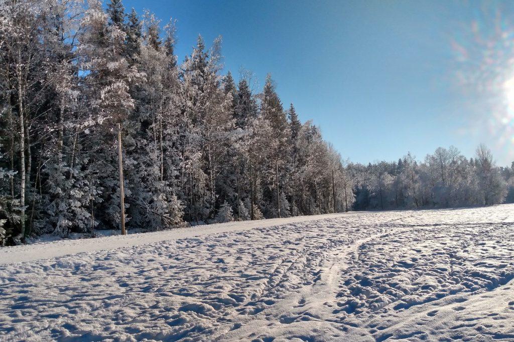 Lysløypa i Bråteskogen på Strømmen. Foto: Vårt Strømmen, vartstrommen.no.